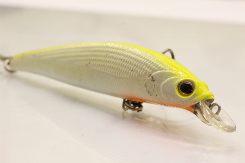 Daiwa Shore Line Shiner  HD F-G